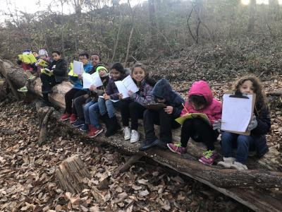 Outdoor Learning in Second Grade
