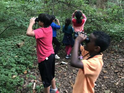 Third graders make observations in one of our newest outdoor learning spaces