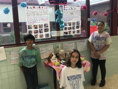 photo from the 2018 PYP Exhibition