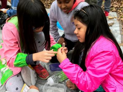 Fourth Graders visit Mason District Park